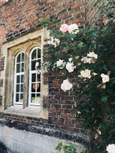 A window with roses in Jesus College